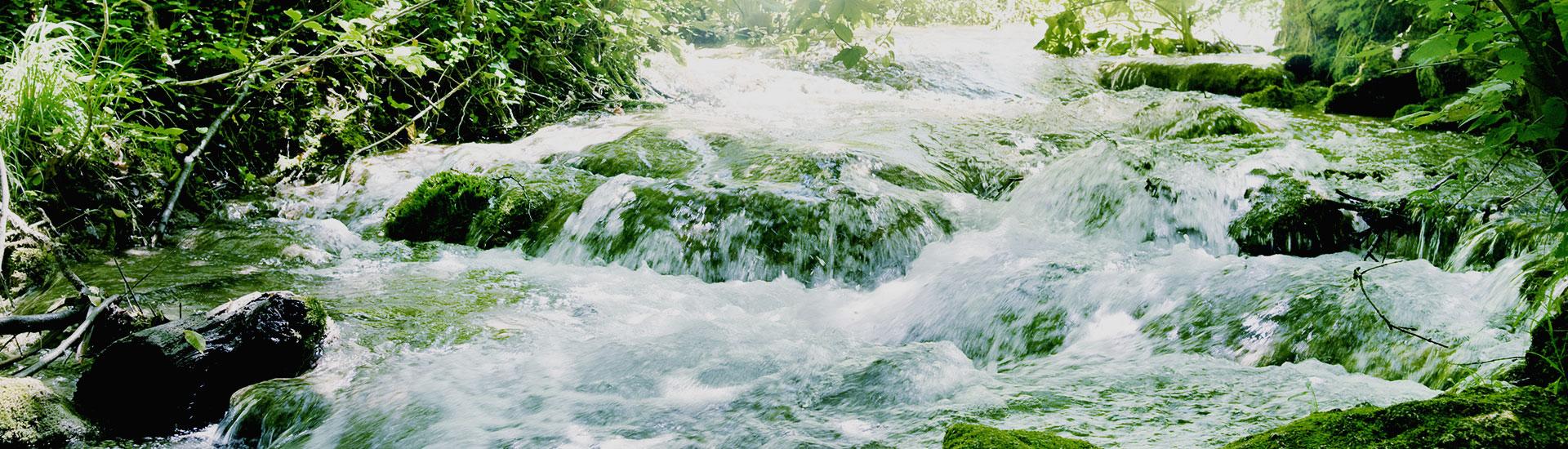 Noleggio bagni chimici Erba - Taian Spurghi - Chiama 800 555 214