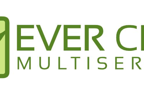 Imprese di pulizia - EVER CLEAN MULTISERVICE S.R.L.S.